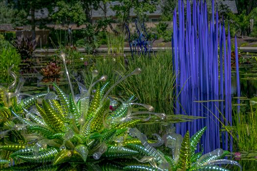 Chihuly Pond Glass.jpg -
